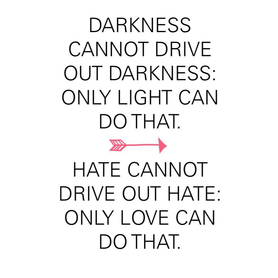 Fulfillment Quotes Darkness Cannot Drive Out Darkness  The Red Fairy Project