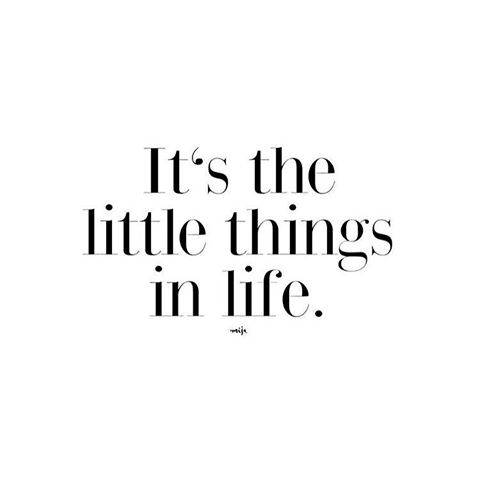 it\'s the little things in life quotes
