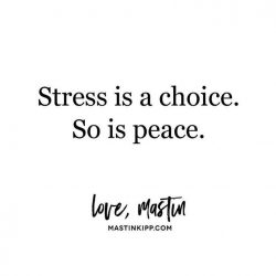 stress, peace, daily inspiration, quote of the day, inspiring quote, daily quote, inspiration, inspiring, inspire, inspired, quotes, positive quotes, positive quote, motivation, success, happiness, happy, wellness, well-being, wisdom, guidance, personal development, personal growth, self improvement, potential, self love, healthy living, health, spirituality, spiritual, soul, spiritual coach, coach, coaching, life coach, health coach, wellness coach, red fairy project, healer, light worker, miracle, miracle worker, light worker, self actualization, stress is a choice